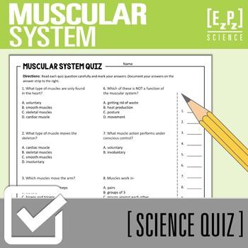Muscular System Quiz