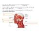 Muscular System Quiz, types of movement, facial muscles