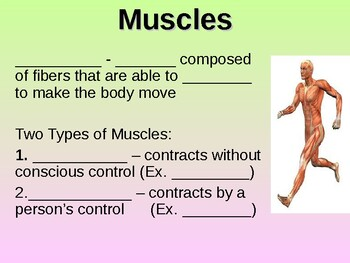 Muscular System Student Fill-in Notes