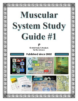 Muscular System Study Guide #1 for Human Anatomy & Physiology
