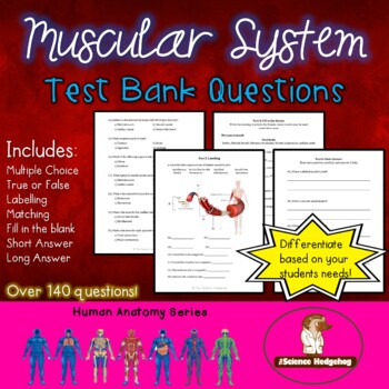 Muscular System Test Questions by The Science Hedgehog   TpT