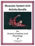 TpT Digital-Ready Muscular System Unit Activity Bundle [20