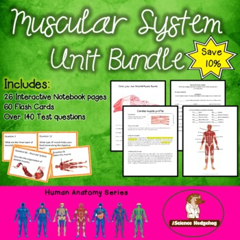 Muscular System Unit Bundle