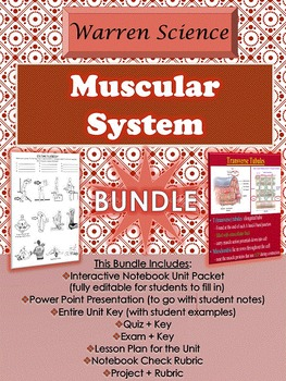 Muscular System Unit *BUNDLE *(Unit 5 in Series)