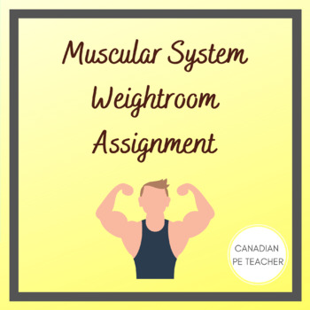 Muscular System Weightroom Assignment