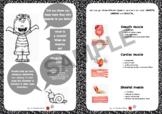 Muscular System + assessment