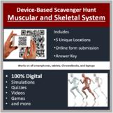 Muscular and Skeletal System – A Digital Scavenger Hunt Activity
