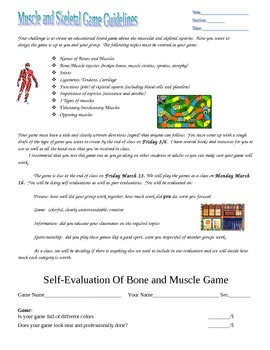 Muscular and Skeletal Systems Board Game Activity and Assessment Rubric