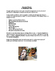 Classical Muses (Worksheets)