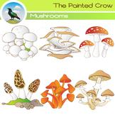 Mushroom Clip Art - 12 Piece Set - Color and Blackline Illustrations
