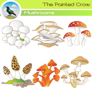 Mushroom Clip Art - 12 Piece Set - Color and Blackline Illustrations