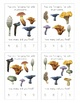 Mushroom Counting Cards for Early Childhood Education and Natural Classroom