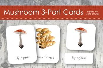 Mushroom Fungi 3-Part Nomenclature Cards- Montessori