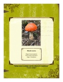 Mushroom Themed Nature Education Unit-Stage 2 (Magic Fores