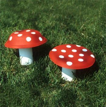 Mushrooms: Vocabulary and craft
