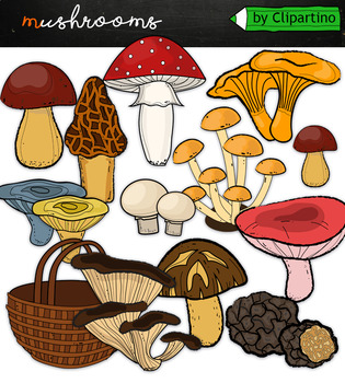 Mushrooms clipart