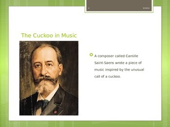 Music Cuckoo in the depths of the woods Carnival of the Animals C. Saint-Saens