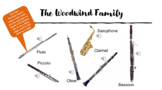 Musical Dynamics and Instrument Families Quiz - ONLINE/REMOTE LEARNING FRIENDLY