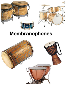 Musical Instrument Classification Posters (Similar to Instrument Families)