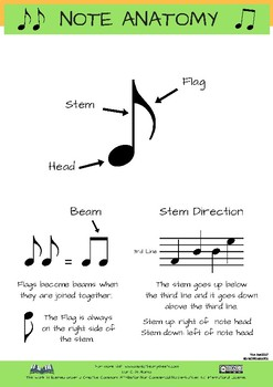 Musical Note Anatomy Sheet *FREE SHEET*