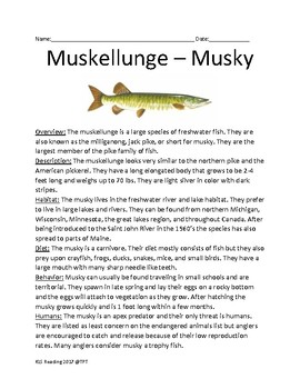 Muskellunge - pike trophy fish lesson facts information questions