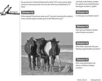 Mustang Brands - Analyzing Patterns