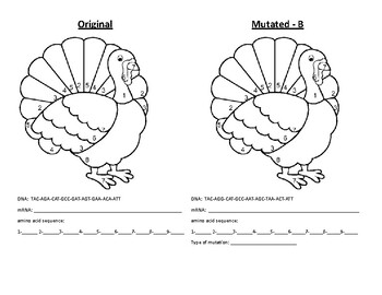 Mutated Turkey Protein Synthesis