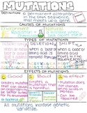 Mutation Notes for 8th Grade NGSS