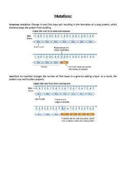 Mutation information sheet