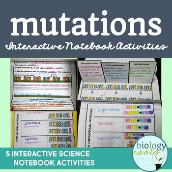 Genes and gene mutations teaching resources teachers pay teachers mutations interactive notebook activities mutations interactive notebook activities fandeluxe Gallery