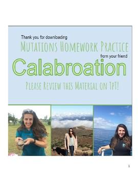 Mutations Practice Homework