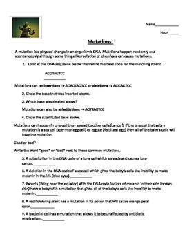 Mutation Worksheets Teachers Pay Teachers