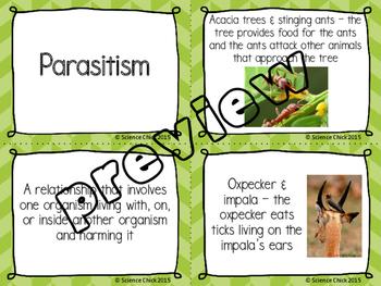 Symbiotic Relationships - Mutualism, Commensalism & Parasitism Card Sort