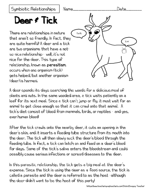 Mutualism Reading Comprehension Worksheets Deer And Tick