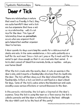 Mutualism Reading Comprehension Worksheets - Deer and Tick Symbiosis