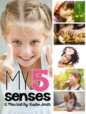 My 5 Senses: A Preschool and Kindergarten Pack