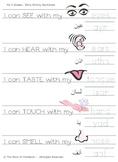 My 5 Senses (Arabic-English)