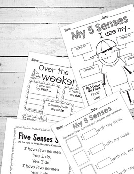My 5 Senses Book & Activities - Maps for Thinking - EDITABLE Flash Cards