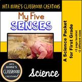 My 5 Senses Booklet