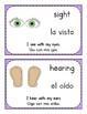 My 5 Senses - Mis 5 Sentidos (Bilingual English & Spanish)