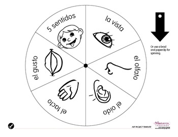My 5 Senses {Mis Cinco Sentidos}