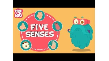 My 5 Senses PPT