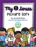 My 5 Senses Picture Sort