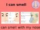 My 5 Senses PowerPoint