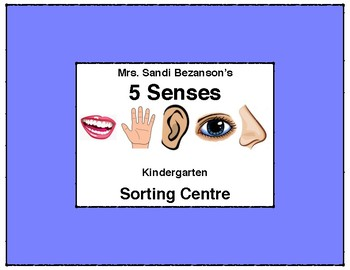 My 5 Senses Sorting