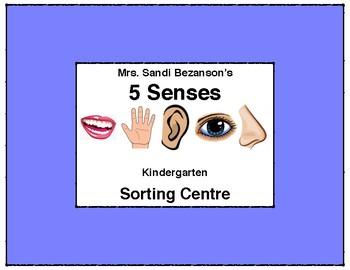 My 5 Senses Sorting