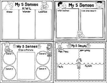 My 5 Senses (Story Companion with story and non-fiction QR codes)