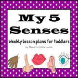 My 5 Senses Toddler Lesson Plan