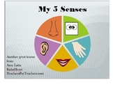 My 5 Senses lesson plan