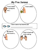 My 5 Senses worksheet